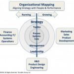 OrganizationalMapping_28120